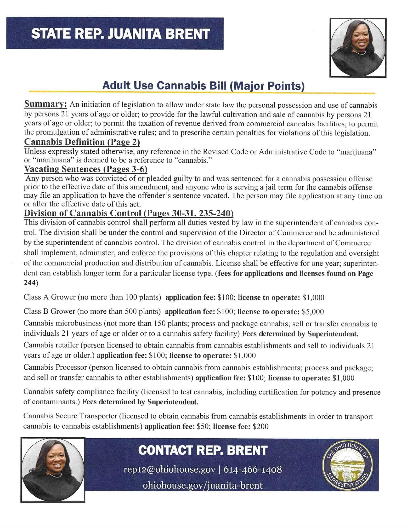 Juanita Brent Adult Use Proposal 2020 Page 1