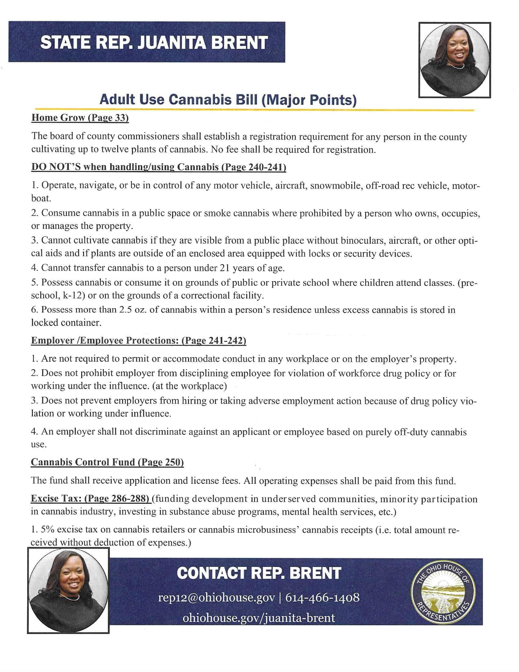 Juanita Brent Adult Use Proposal 2020 Page 2